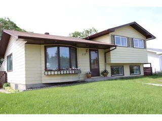 Photo 1: 117 SECOND Avenue NW: Airdrie Residential Detached Single Family for sale : MLS®# C3531256