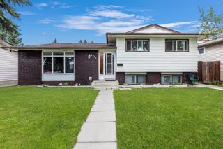 Photo 1: 4772 Rundlehorn Drive NE in Calgary: Rundle Detached for sale : MLS®# A1144252