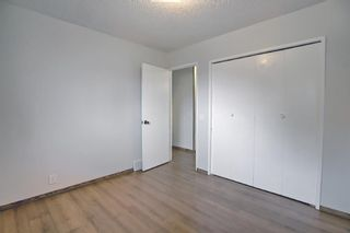 Photo 12: 4259 49 Street NE in Calgary: Whitehorn Detached for sale : MLS®# A1131311