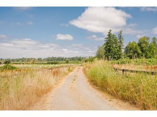 Photo 37: 23063 16 Avenue in Langley: Campbell Valley House for sale : MLS®# R2603383