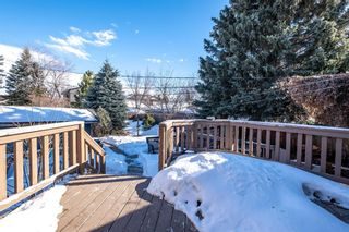 Photo 20: 2510 17 Street NW in Calgary: Capitol Hill Detached for sale : MLS®# A1074729
