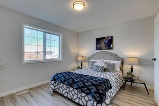 Photo 21: 11 Bridlewood Gardens SW in Calgary: Bridlewood Detached for sale : MLS®# A1149617