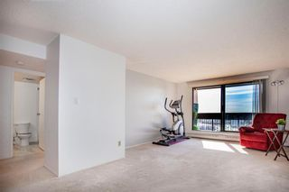 Photo 10: 1710 9800 Horton Road SW in Calgary: Haysboro Apartment for sale : MLS®# A1096247
