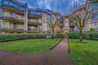 "Photo 1: 115 2968 BURLINGTON Drive in Coquitlam: North Coquitlam Condo for sale in ""THE BURLINGTON"" : MLS®# R2238048"
