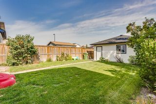 Photo 20: 2048 REUNION Boulevard NW: Airdrie Detached for sale : MLS®# C4260947