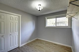 Photo 23: 4604 Maryvale Drive NE in Calgary: Marlborough Detached for sale : MLS®# A1090414