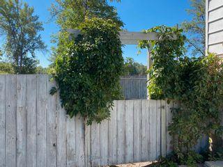 Photo 8: 237 Portage Ave in Portage la Prairie: House for sale : MLS®# 202120515