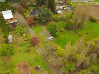 Photo 15: 4362 Wilkinson Rd in VICTORIA: SW Interurban House for sale (Saanich West)  : MLS®# 785556