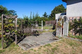 Photo 28: 3851 Merriman Dr in : SE Cedar Hill House for sale (Saanich East)  : MLS®# 853784