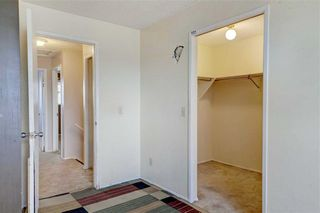 Photo 12: 39 TEMPLETON Bay NE in Calgary: Temple Detached for sale : MLS®# C4261521