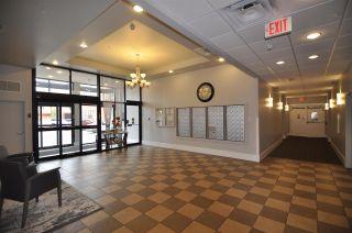 Photo 24: 408 6608 28 Avenue NW in Edmonton: Zone 29 Condo for sale : MLS®# E4229003