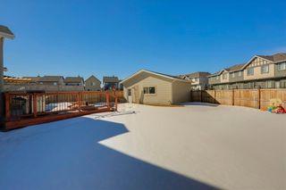 Photo 39: 64 NEW BRIGHTON Grove SE in Calgary: New Brighton Detached for sale : MLS®# C4233514