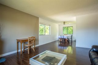 Photo 32: 7920 OSPREY STREET in Mission: Mission BC House for sale : MLS®# R2482190