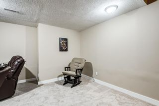 Photo 30: 173 Martinglen Way NE in Calgary: Martindale Detached for sale : MLS®# A1144697