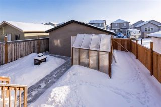 Photo 43: 54 STRAWBERRY Lane: Leduc House for sale : MLS®# E4228569