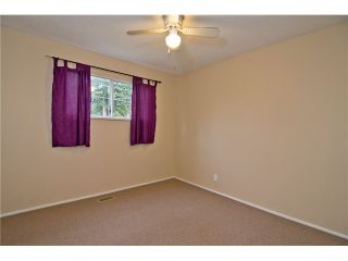 Photo 6: 11783 STEEVES ST in Maple Ridge: Southwest Maple Ridge House for sale : MLS®# V1052676