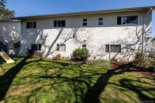 Photo 38: 4208 Morris Dr in : SE Lake Hill House for sale (Saanich East)  : MLS®# 871625