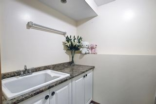 Photo 29: 187 Bridlewood Circle SW in Calgary: Bridlewood Detached for sale : MLS®# A1110273