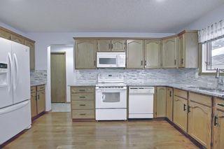 Photo 17: 128 Eldorado Close NE in Calgary: Monterey Park Detached for sale : MLS®# A1116586