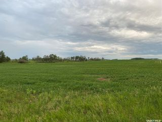 Photo 6: Kostenly Land in Emerald: Farm for sale (Emerald Rm No. 277)  : MLS®# SK861004