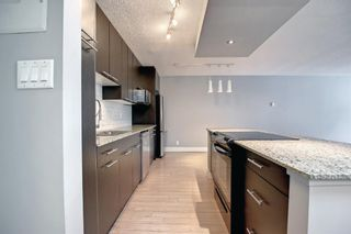 Photo 9: 406 501 57 Avenue SW in Calgary: Windsor Park Apartment for sale : MLS®# A1142596