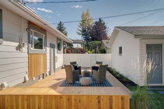 Photo 52: 10815 Maplecreek Drive SE in Calgary: Maple Ridge Detached for sale : MLS®# A1038611