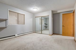 Photo 33: 203 333 2 Avenue NE in Calgary: Crescent Heights Apartment for sale : MLS®# A1077387