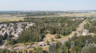 Photo 6: 40 BLACKBURN Drive W in Edmonton: Zone 55 House for sale : MLS®# E4255224