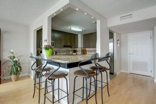 Photo 9: 503 330 26 Avenue SW in Calgary: Mission Apartment for sale : MLS®# A1105645