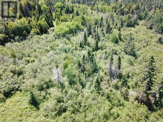 Photo 11: 100 Mount Pleasant Road in St. George: Vacant Land for sale : MLS®# NB059440
