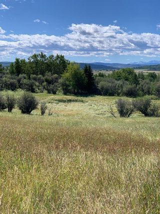 Photo 7: 10 176142 Hwy 549 W: Rural Foothills County Land for sale : MLS®# A1117268