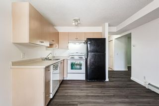 Photo 23: 3209 1620 70 Street SE in Calgary: Applewood Park Apartment for sale : MLS®# A1116068