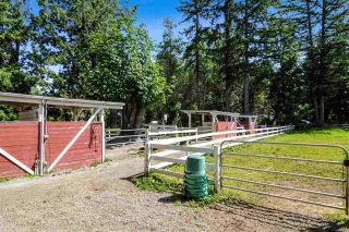 Photo 22: 21113 16 Avenue in Langley: Campbell Valley Agri-Business for sale : MLS®# C8033266