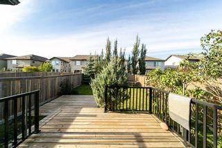 Photo 9: 11413 14 Avenue in Edmonton: Zone 55 House Half Duplex for sale : MLS®# E4258192