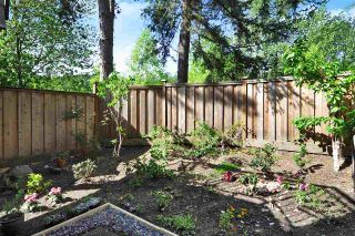 "Photo 19: 53 1195 FALCON Drive in Coquitlam: Eagle Ridge CQ Townhouse for sale in ""The Courtyards"" : MLS®# R2369531"