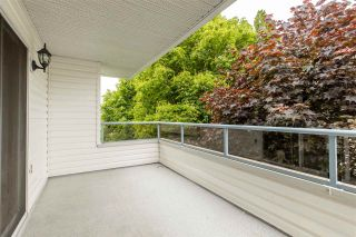 Photo 5: 307 5377 201A STREET in Langley: Langley City Condo for sale : MLS®# R2457477