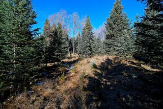 Photo 25: 20.02 Acres +/- NW of Cochrane in Rural Rocky View County: Rural Rocky View MD Land for sale : MLS®# A1065950