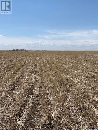 Photo 22: Assiniboia Farm Land in Lake Of The Rivers Rm No. 72: Agriculture for sale : MLS®# SK850362
