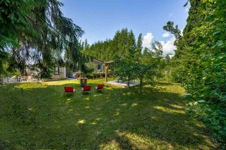 """Photo 17: 10250 240 Street in Maple Ridge: Albion House for sale in """"ALBION"""" : MLS®# R2378651"""