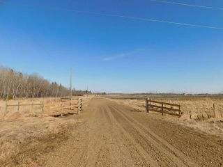 Photo 10: Hwy 28 North of Twp 570: Rural Sturgeon County Rural Land/Vacant Lot for sale : MLS®# E4238709