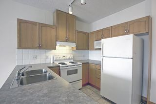 Photo 5: 202 1920 14 Avenue NE in Calgary: Mayland Heights Apartment for sale : MLS®# A1106504