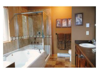 """Photo 7: 75 24185 106B Avenue in Maple Ridge: Albion 1/2 Duplex for sale in """"TRAIL'S EDGE"""" : MLS®# V832717"""