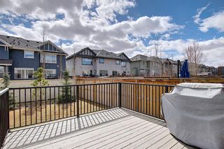 Photo 40: 1733 Baywater Drive SW: Airdrie Detached for sale : MLS®# A1095071