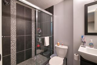 Photo 31: 113 Copperstone Circle SE in Calgary: Copperfield Detached for sale : MLS®# A1103397