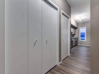 Photo 5: 1611 4641 128 Avenue NE in Calgary: Skyview Ranch Apartment for sale : MLS®# A1029088