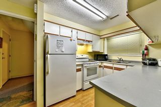 Photo 15: 3171 DUNKIRK Avenue in Coquitlam: New Horizons House for sale : MLS®# R2238707