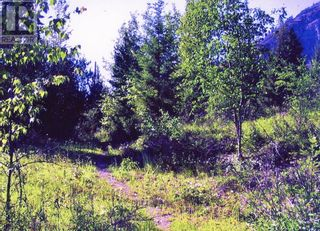 Photo 4: 8488 BLACK MOUNTAIN RD in Chase: Vacant Land for sale : MLS®# 163450