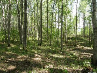 Photo 6: Lot 10 Delaronde Way in Delaronde Lake: Lot/Land for sale : MLS®# SK851495