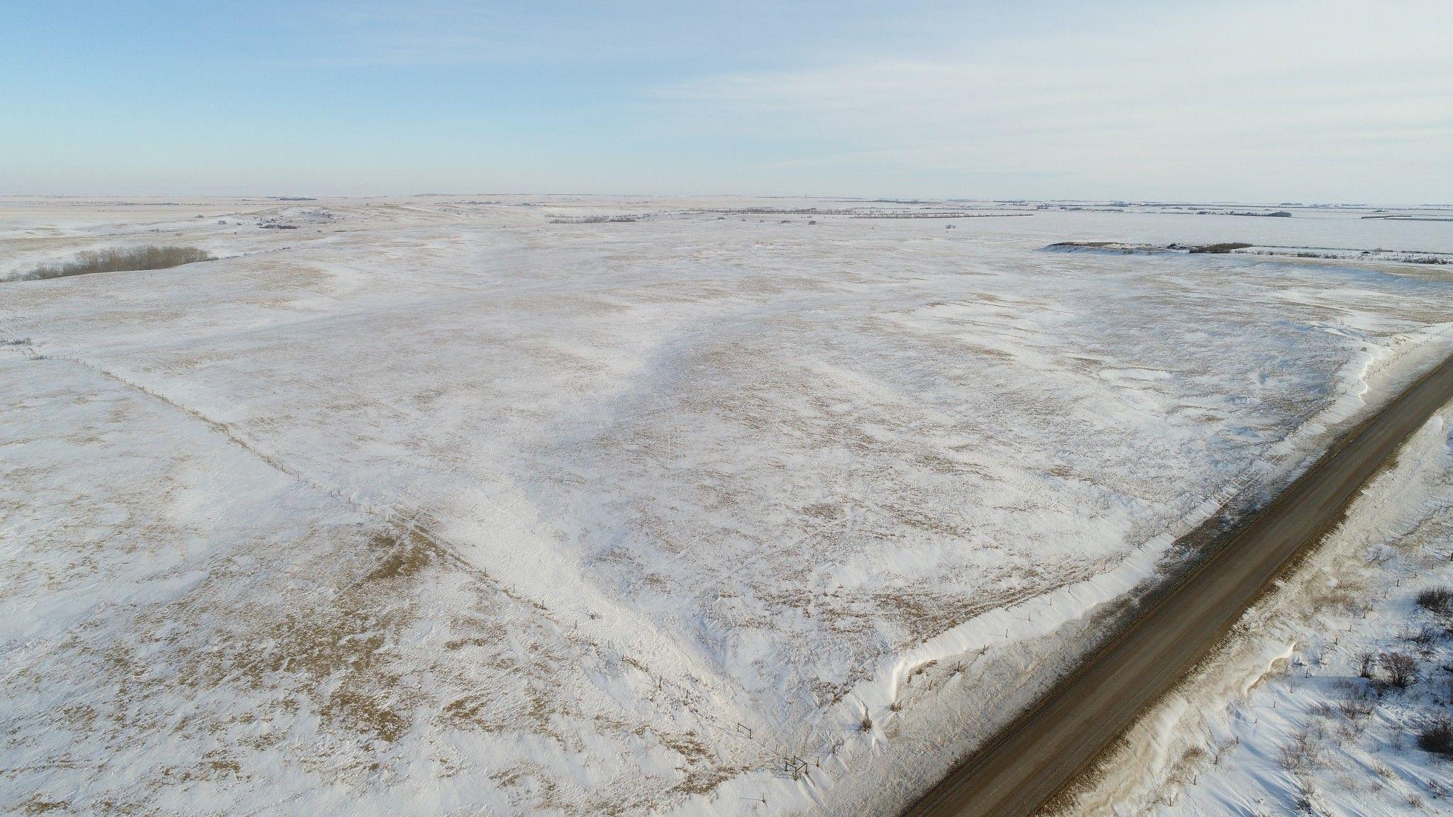 Main Photo: 142.67 Acres - RM Huron #223 - Tugaske, SK Area