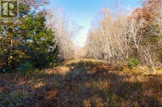 Photo 17: Lot 10 Highway 10 in Cookville: Vacant Land for sale : MLS®# 202022759